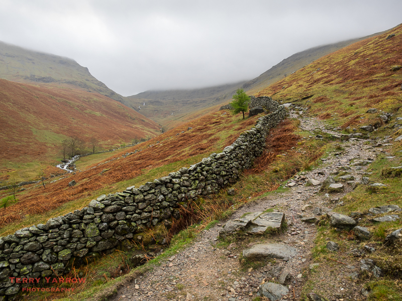The Path Beside Tongue Gill