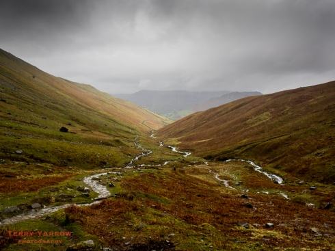 Looking Back Down Tongue Gill