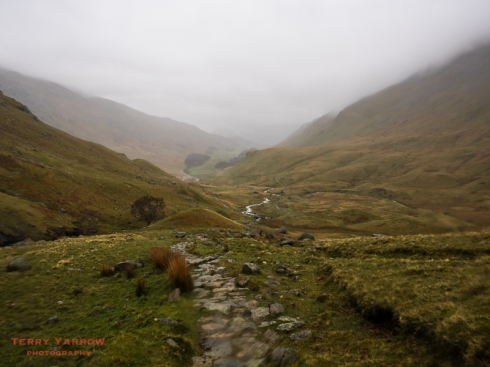 Beside Grisedale Beck