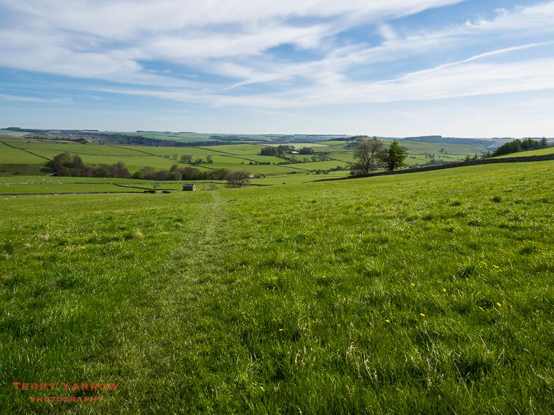 Across the Farm