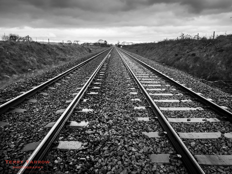 Down the Lines