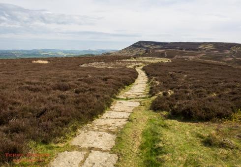 Climbing Carlton Moor