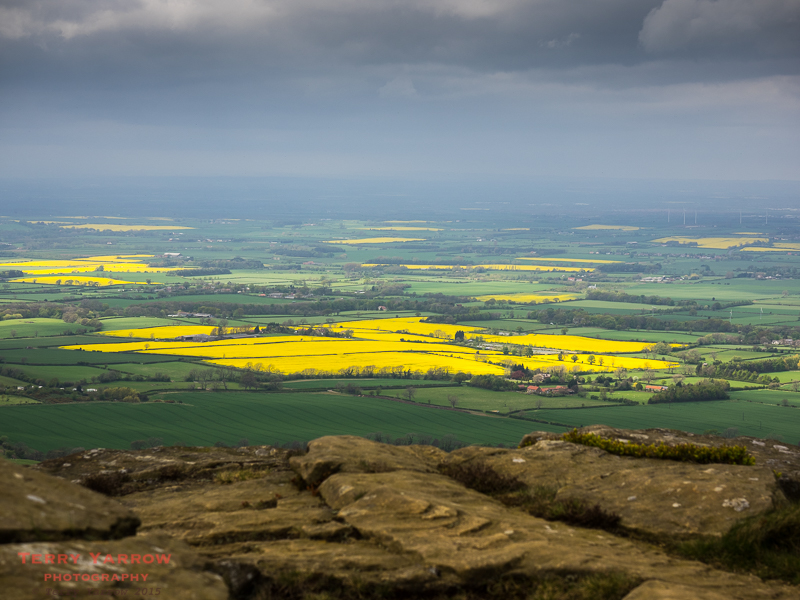 Fields of Gold - the view from the top of Wain Stones