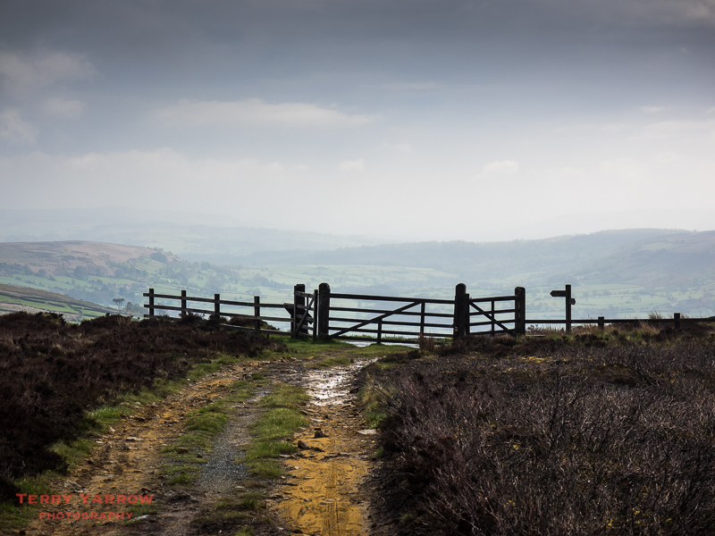 On Glaisdale Rigg