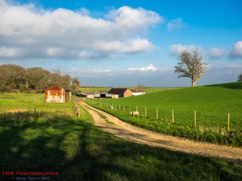 The Farm Track