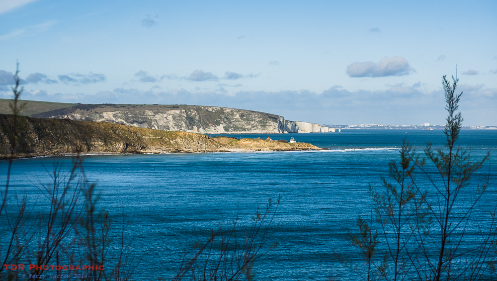Peverill Point and Old Harry Rocks