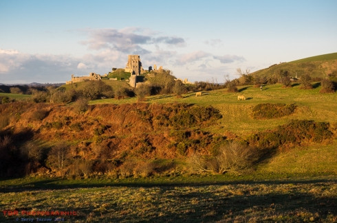 Corfe Castle Across the Common