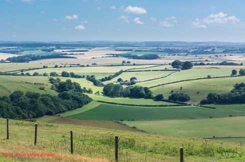 The Lyscombe Valley
