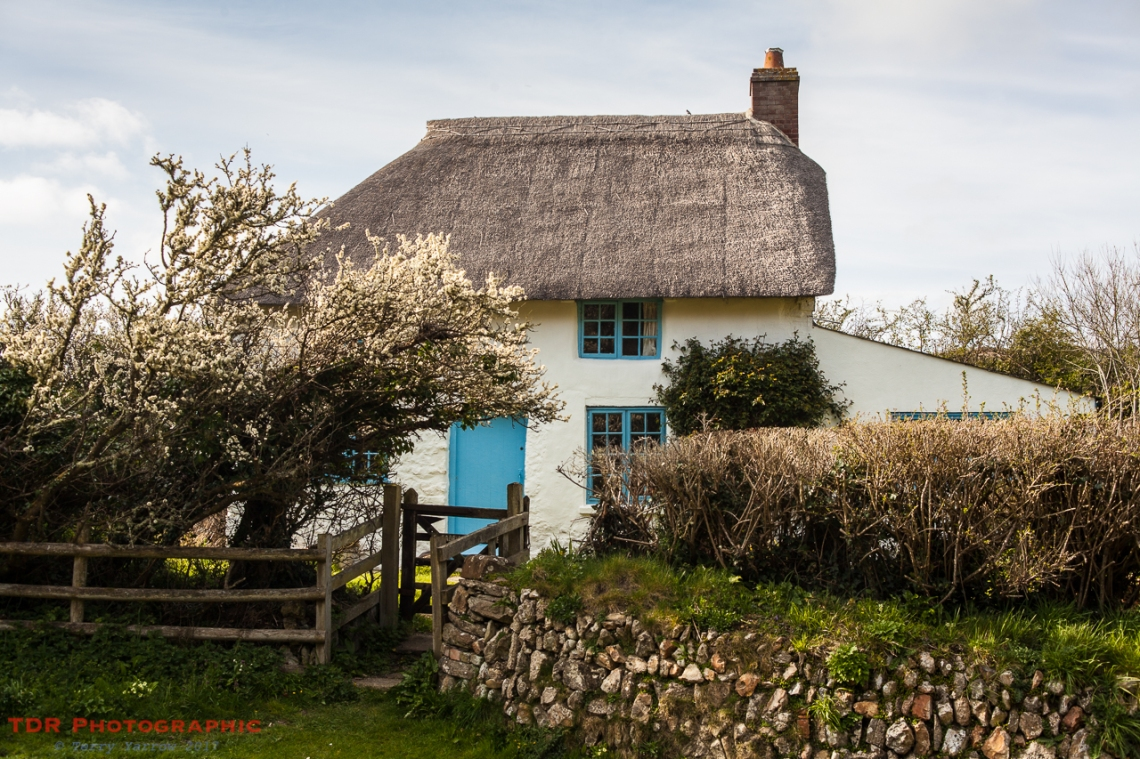 A Dorset Cottage