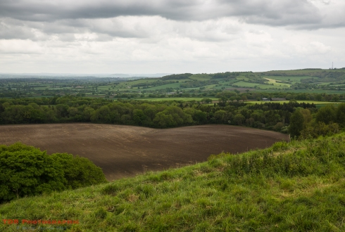 Blackmore Vale View