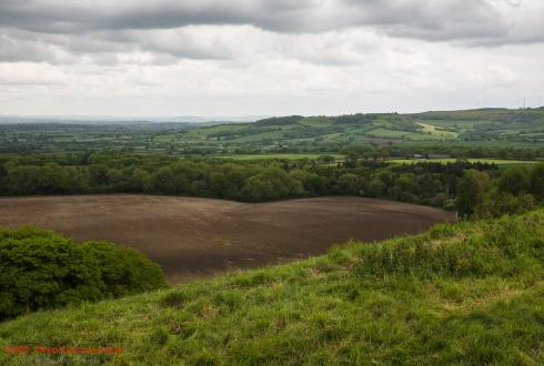 Blackmore Vale View