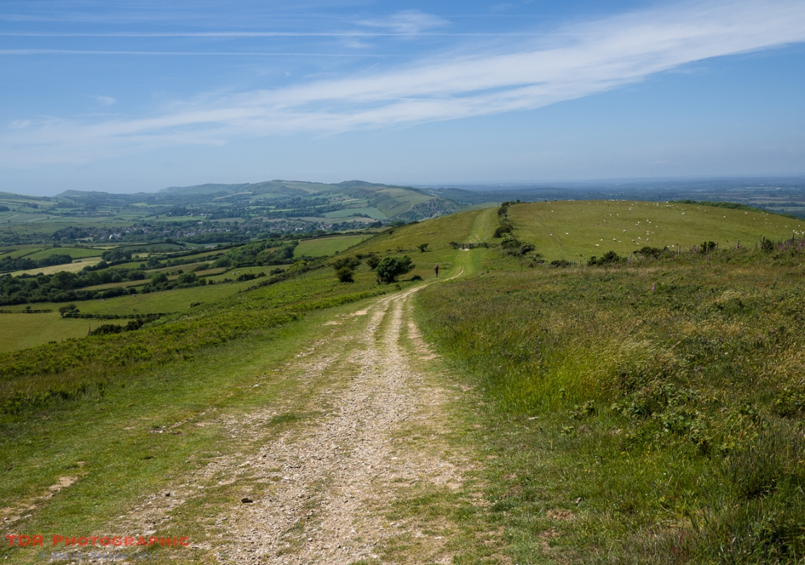 On the Purbeck Ridge