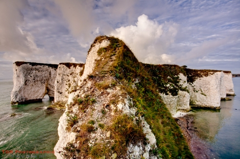 Old Harry view