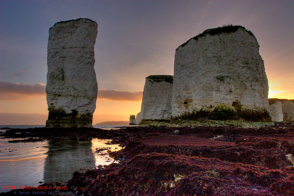Old Harry at Sunset