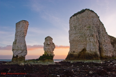 Old Harry and Wife
