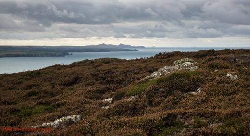 On the Pembrokeshire Coast Path