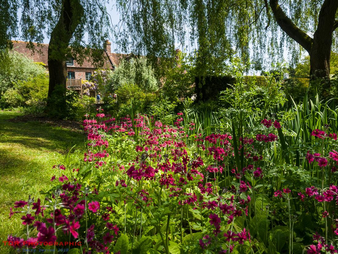 Stanbridge Mill Garden