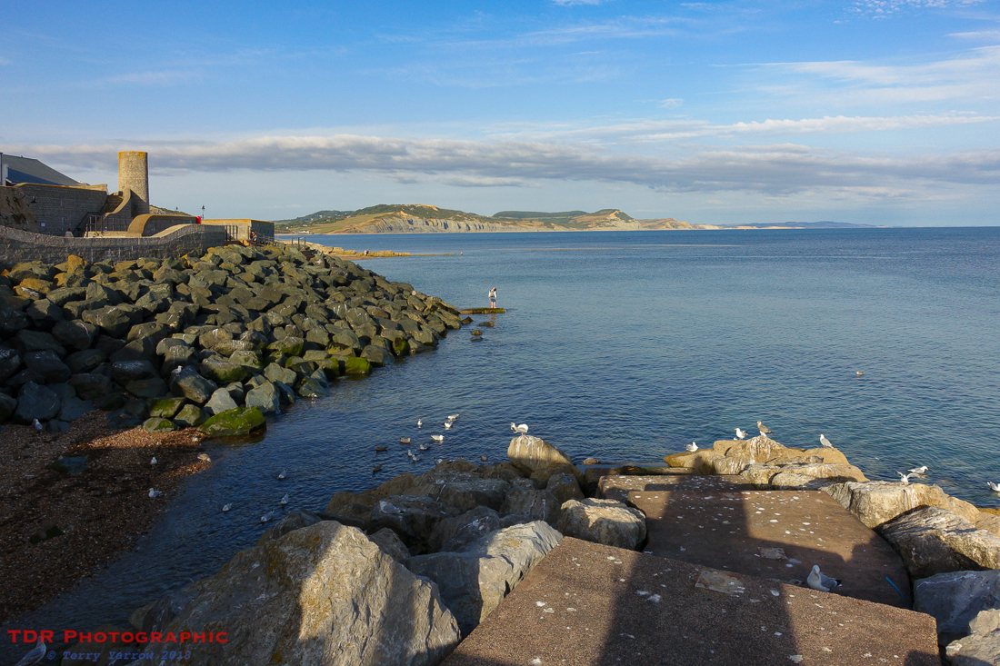The Dorset coast from Lyme Regis