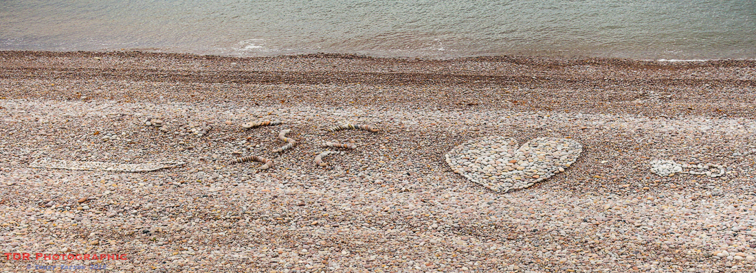 Art on the Beach