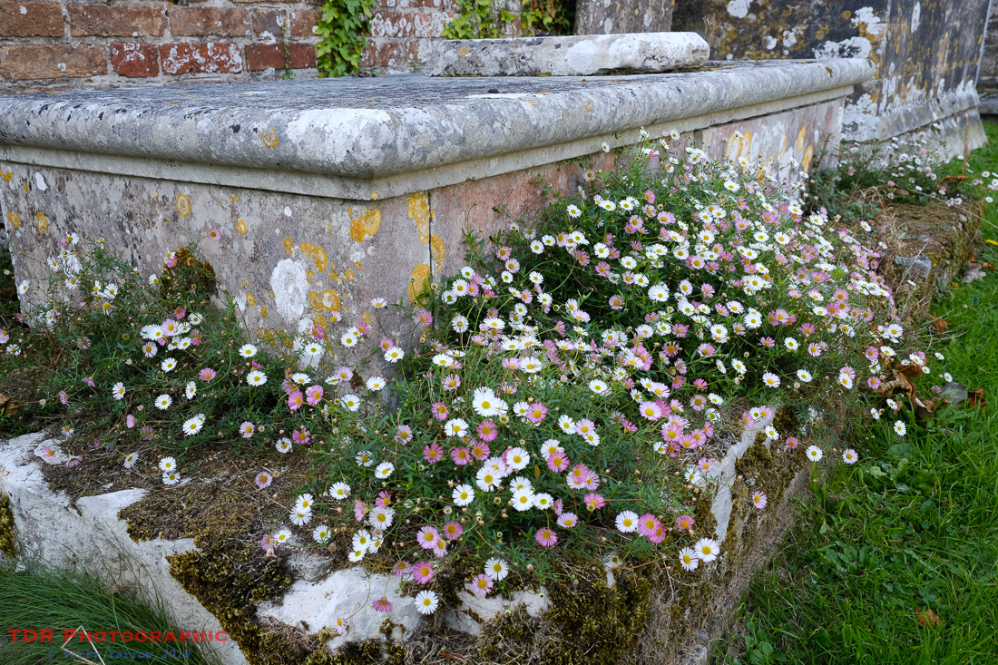 Flower-strewn Tomb