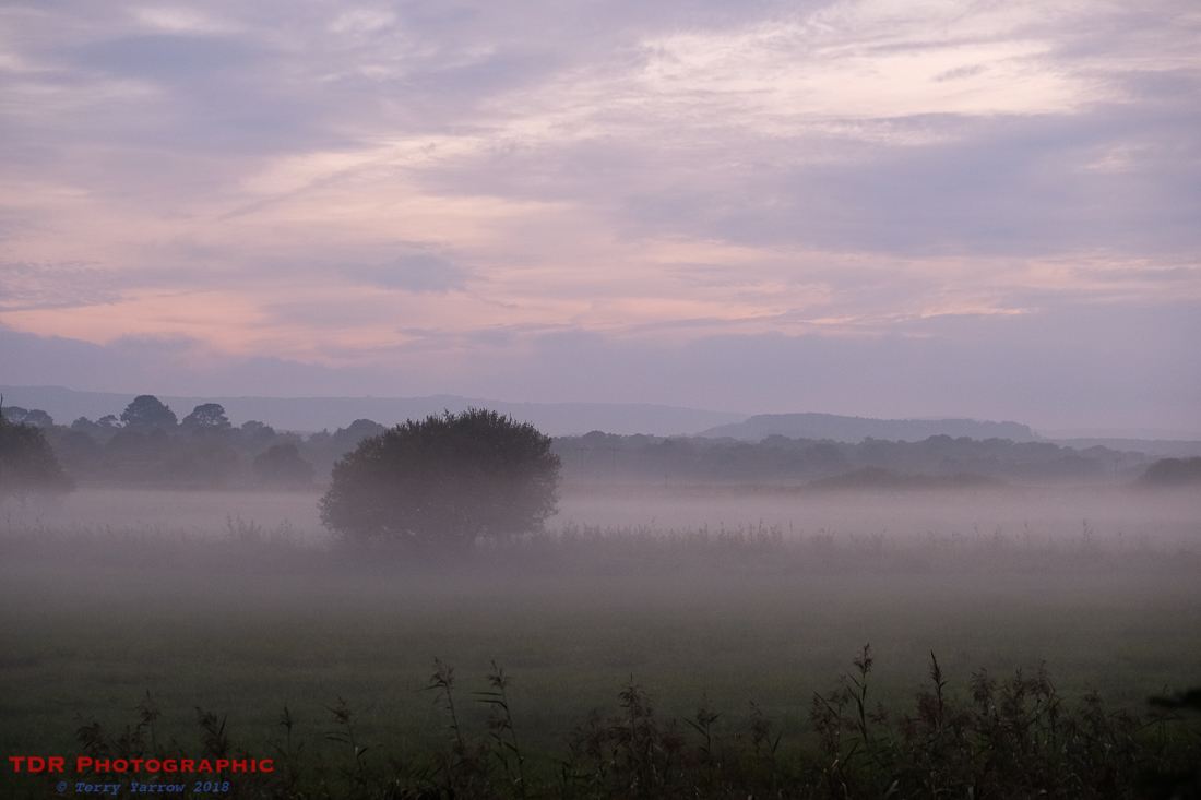 Mist on the Meadows