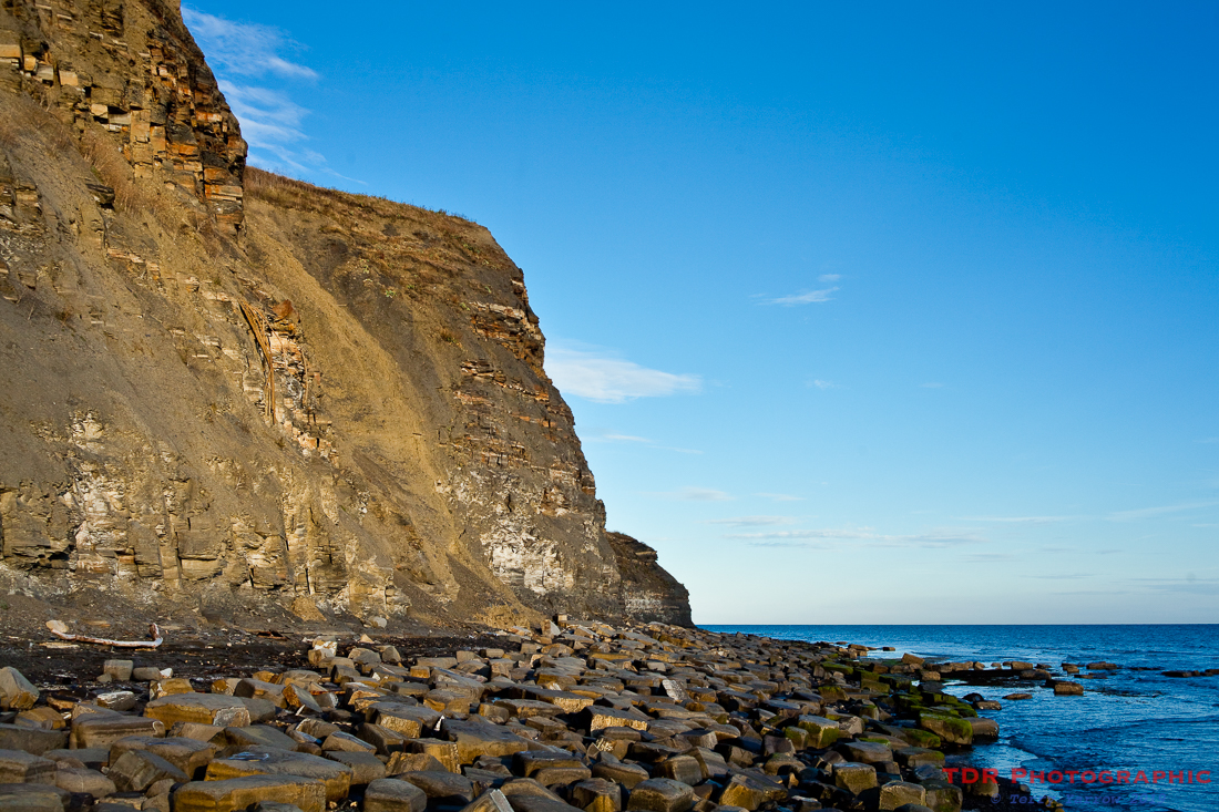 The Kimmeridge Undercliff