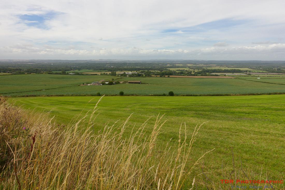 A Dorset view