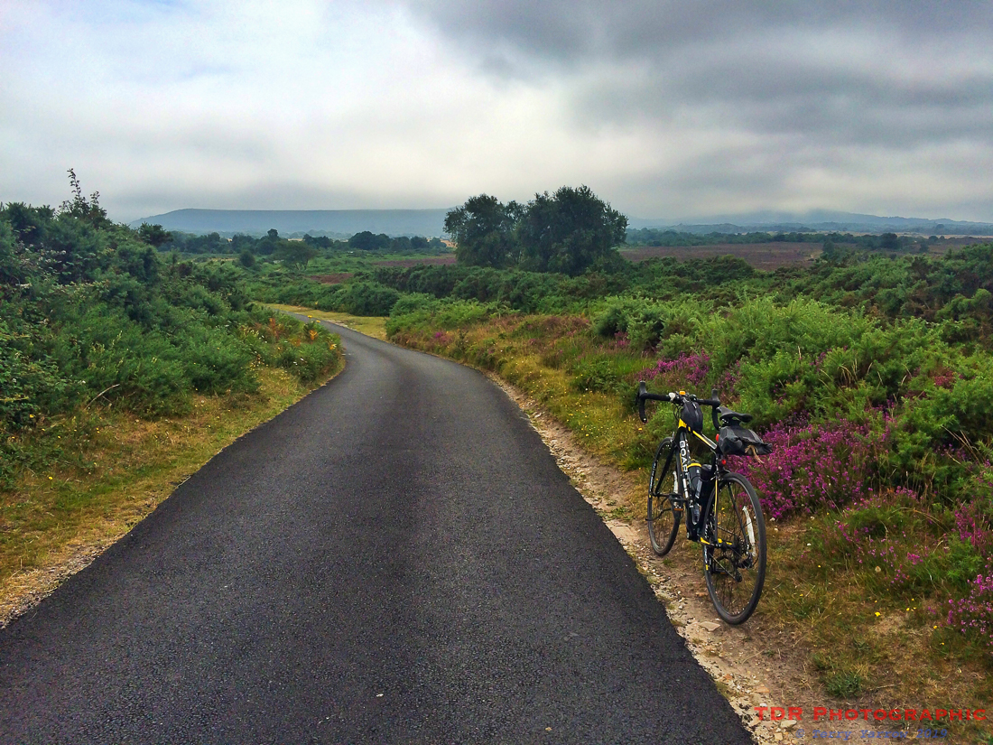 Cycling the Dorset Lanes